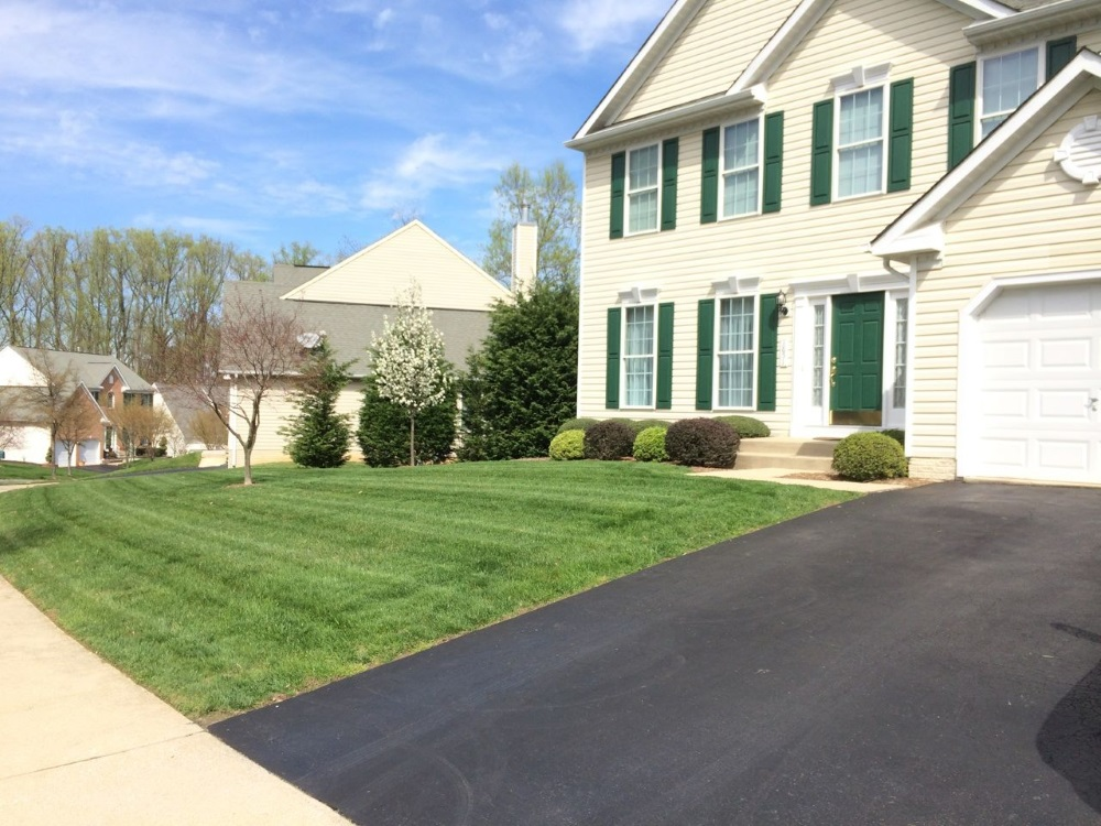 Mowing Services and Yard Cleanup